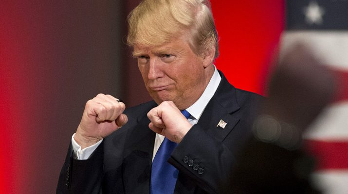 Donald Trump raising his fists during campaign